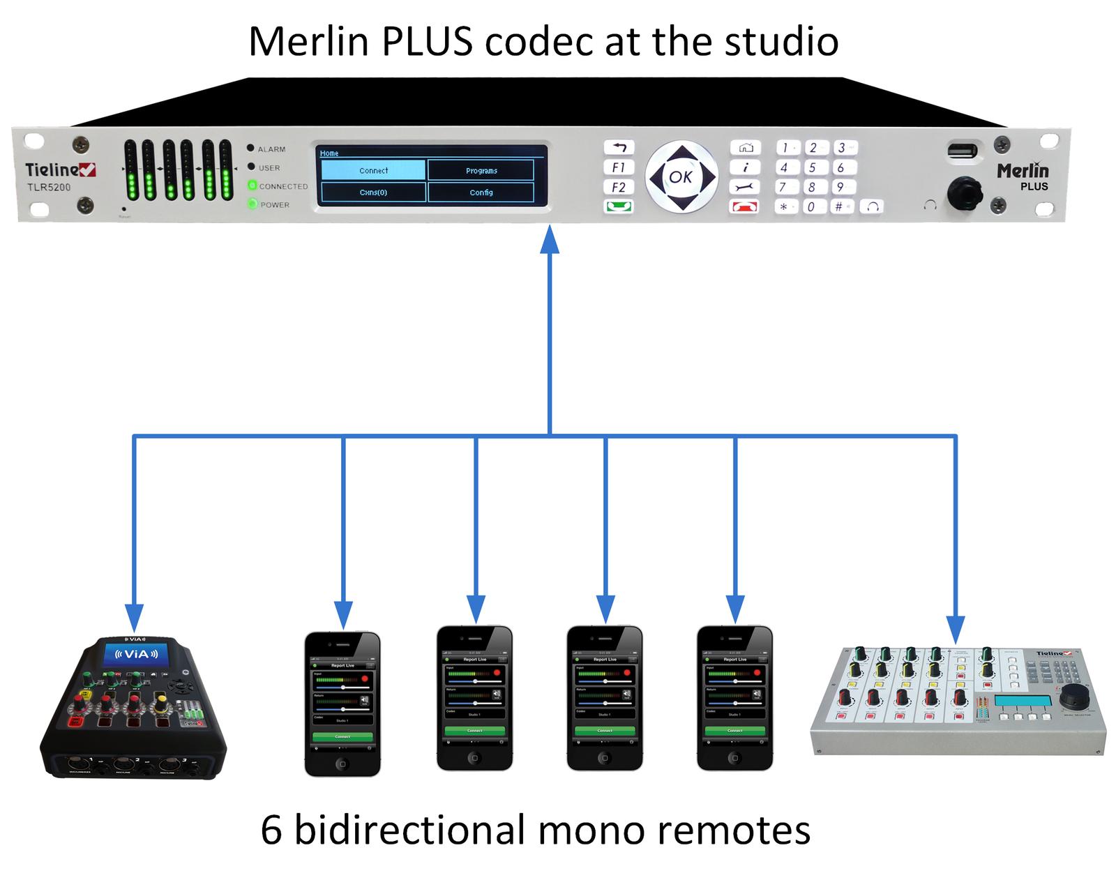 815_Merlin_PLUS_-_6_codecs_v.2_20160224